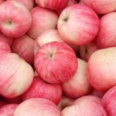 洛川红富士 苹果醋