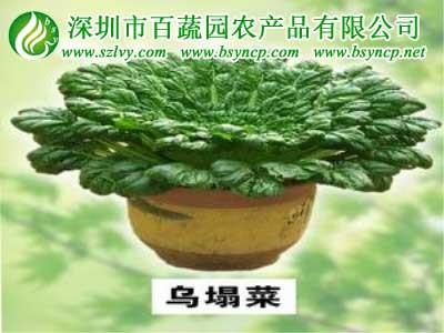 深圳农副产品配送卫生安全配送