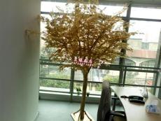 哪里定做仿真樹招財樹搖錢樹圣誕裝飾樹專業