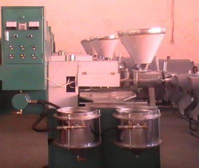 鑫海机械榨油机