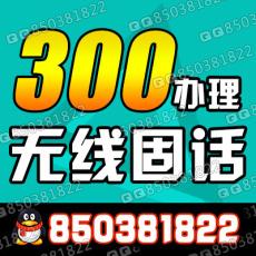 长沙铁通无线固定电话280元办理含360元话费