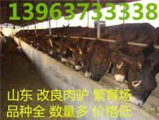 養驢利潤養驢的市場前景